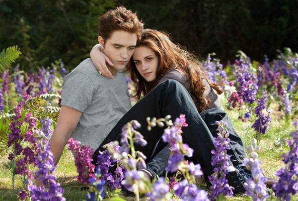 Stmívání HD (movie) / Twilight (2008)